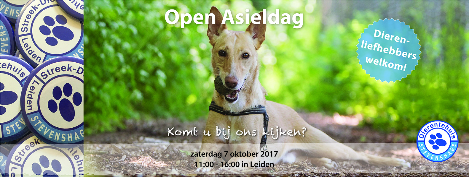 Kom naar de Open Asieldag 2017!