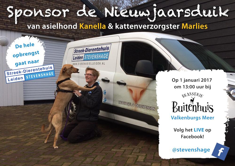 Sponsor de Nieuwjaarsduik van kattenverzorgster Marlies en asielhond Kanella voor Dierentehuis Stevenshage in Leiden!
