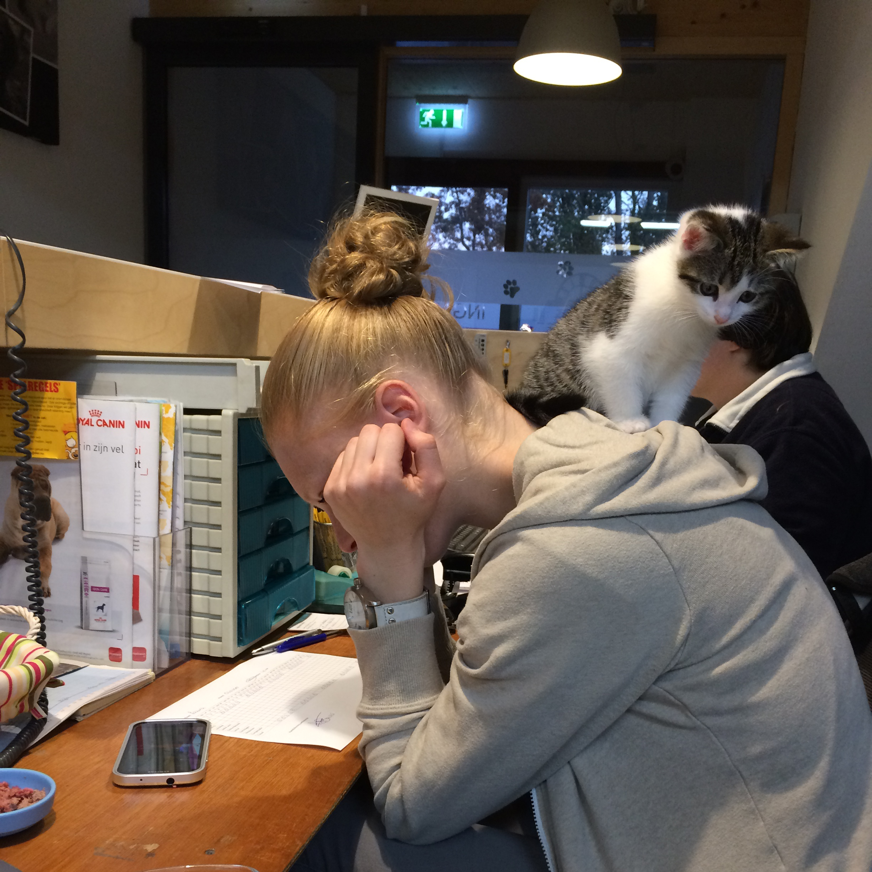 Kitten Cash gebruikt Laura als voetenwarmer