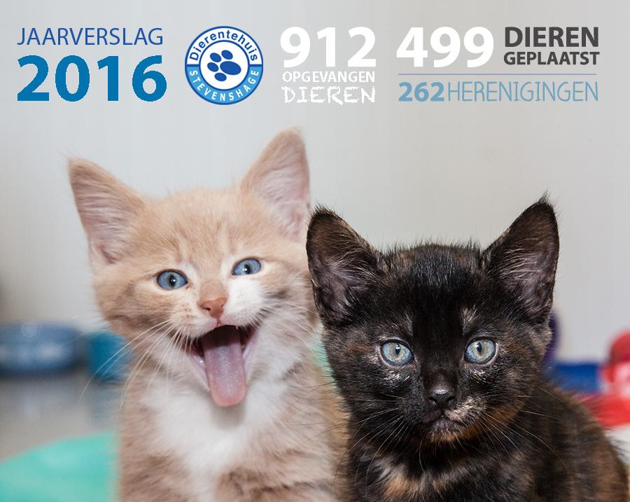 Klik hier om het Jaarverslag 2016 van Dierentehuis Stevenshage te downloaden