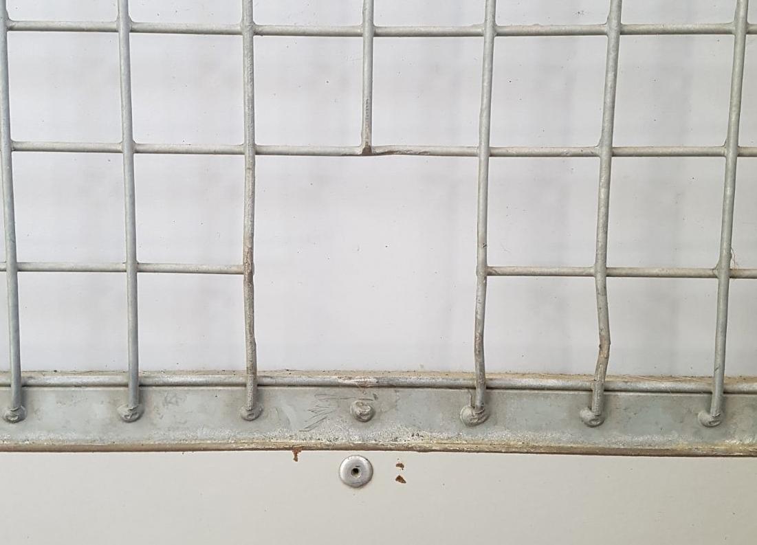 Het gat in het hek is - weliswaar bijgevijld en afgedekt - nog in het asiel aanwezig als stille getuige van het voorval met Basil.