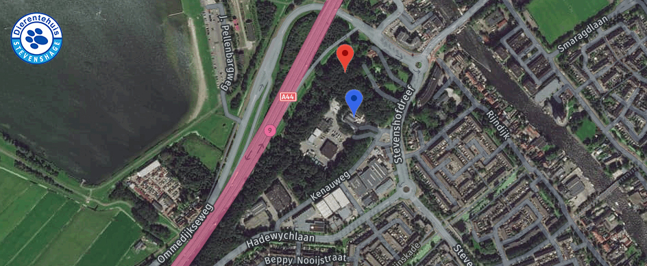 De geplande bouwlocatie van de toren (rood) ligt vlak naast Dierentehuis Stevenshage (blauw)