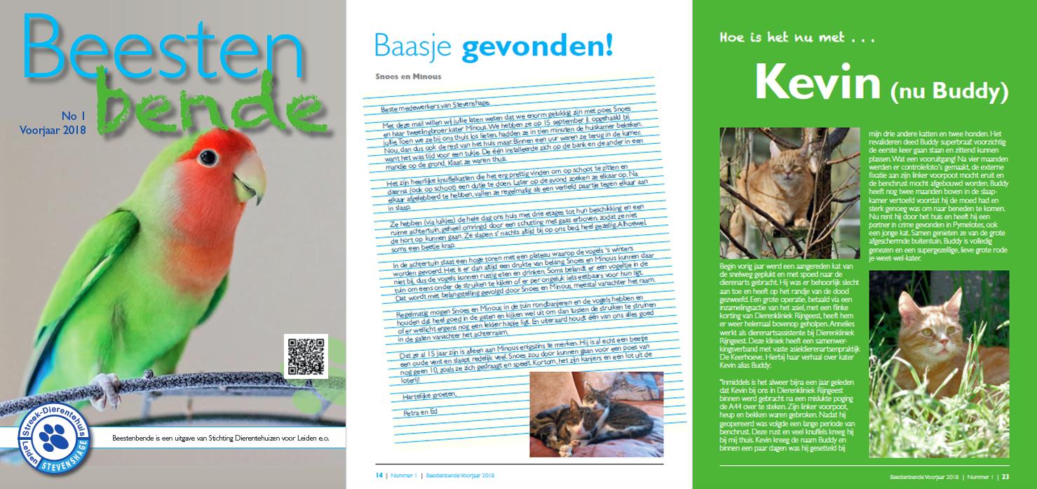 Word donateur van Dierentehuis Stevenshage vanaf 15 euro per jaar en ontvang elk kwartaal ons asielblad Beestenbende!