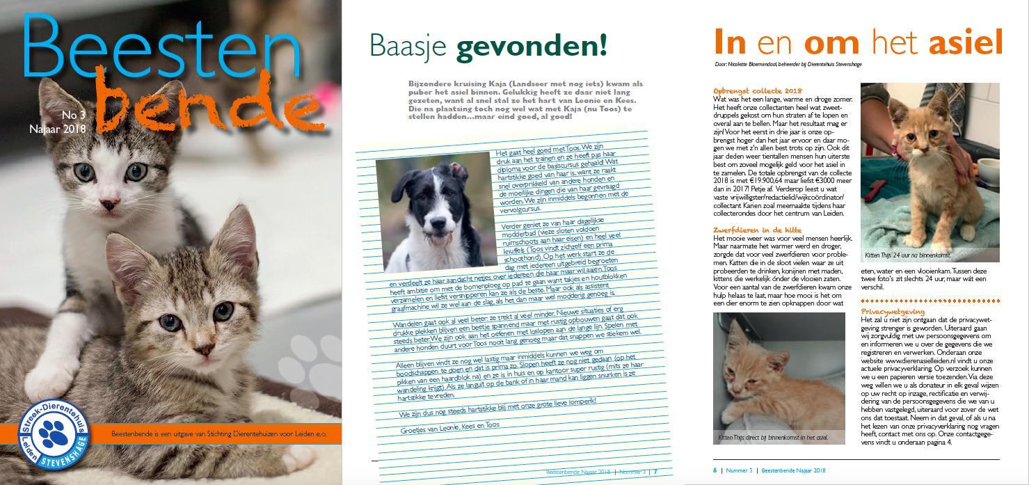 Word donateur van Dierentehuis Stevenshage vanaf 15 euro per jaar en ontvang elk kwartaal ons asielblad Beestenbende thuis!