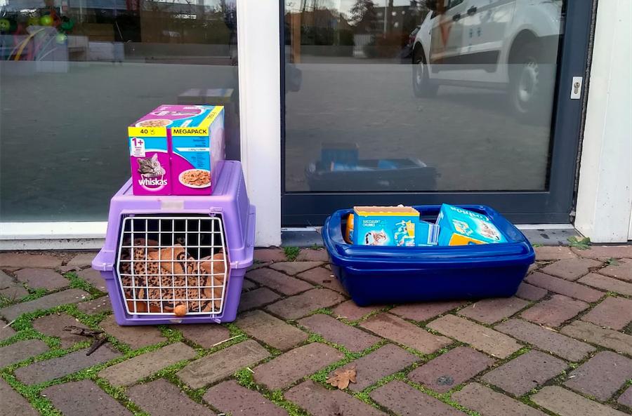 Een kat is met zijn hele hebben en houwen voor de deur gezet van Dierentehuis Stevenshage in Leiden.