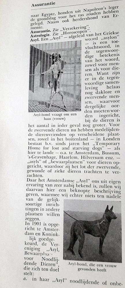 IN Toepoel's Hondenencyclopaedie die rond 1950 uitkwam staat het begrip asiel omschreven.