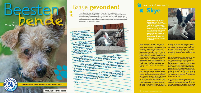 De zomereditie van Beestenbende, het asielmagazine van Dierentehuis Stevenshage in Leiden.
