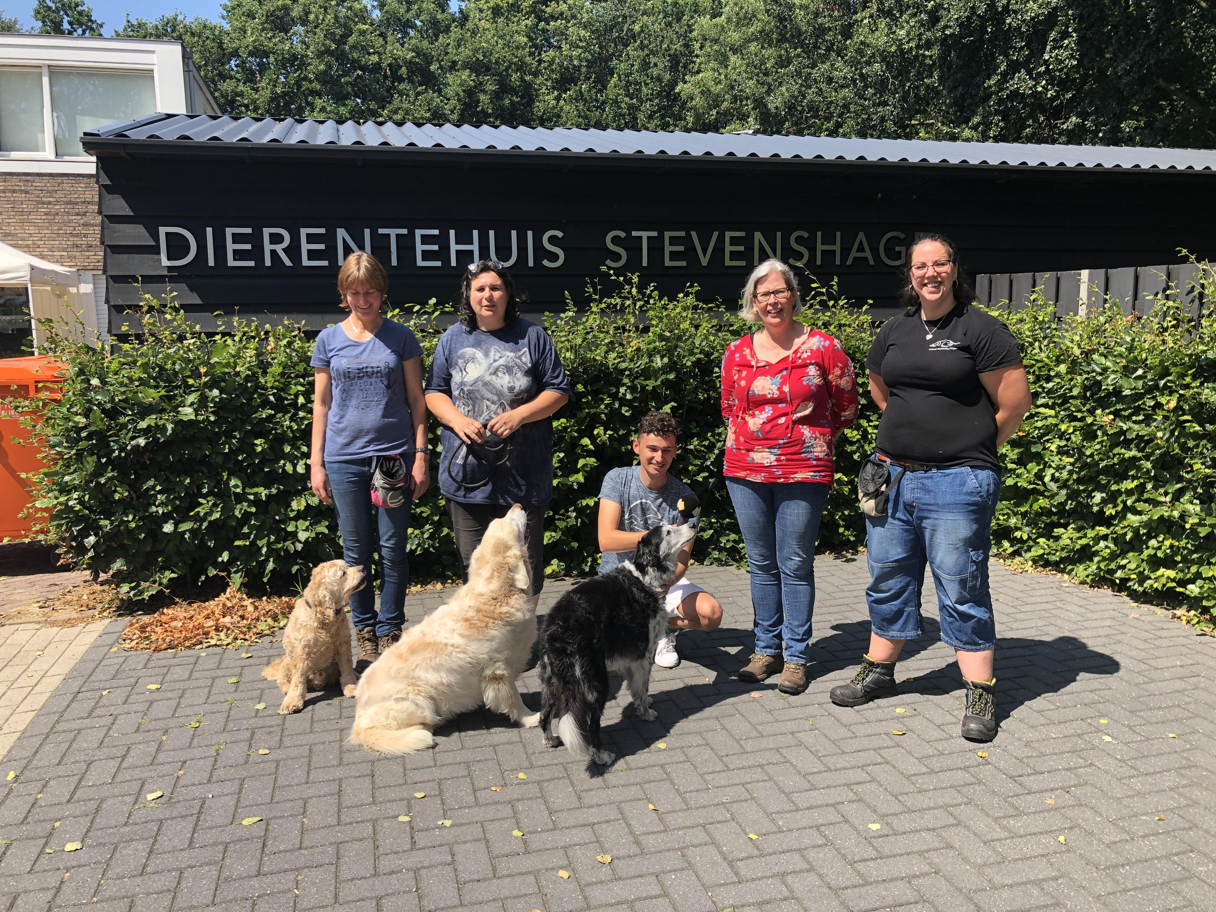Luister hier het gezellige radiofragment van NPO Radio 5 en loop zelf ook een beetje mee bij Dierentehuis Stevenshage in Leiden.
