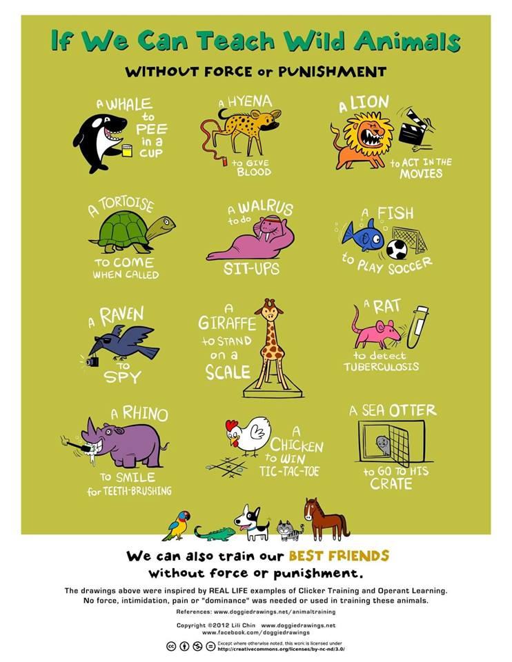 ©2012 Lili Chin. Alle rechten voorbehouden. Bron: Doggiedrawings.net