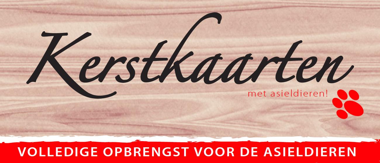 Bestel unieke kerstkaarten met asieldieren van Dierentehuis Stevenshage in onze webshop!