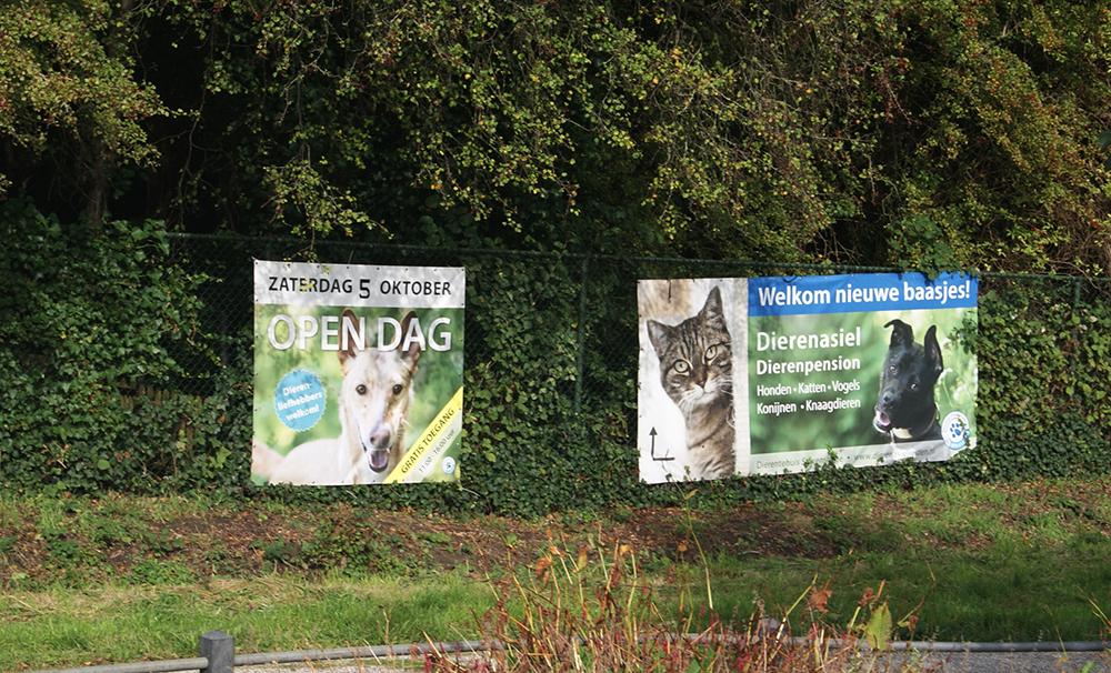 Elk jaar organiseert Dierentehuis Stevenshage in Leiden de Open Asieldag.