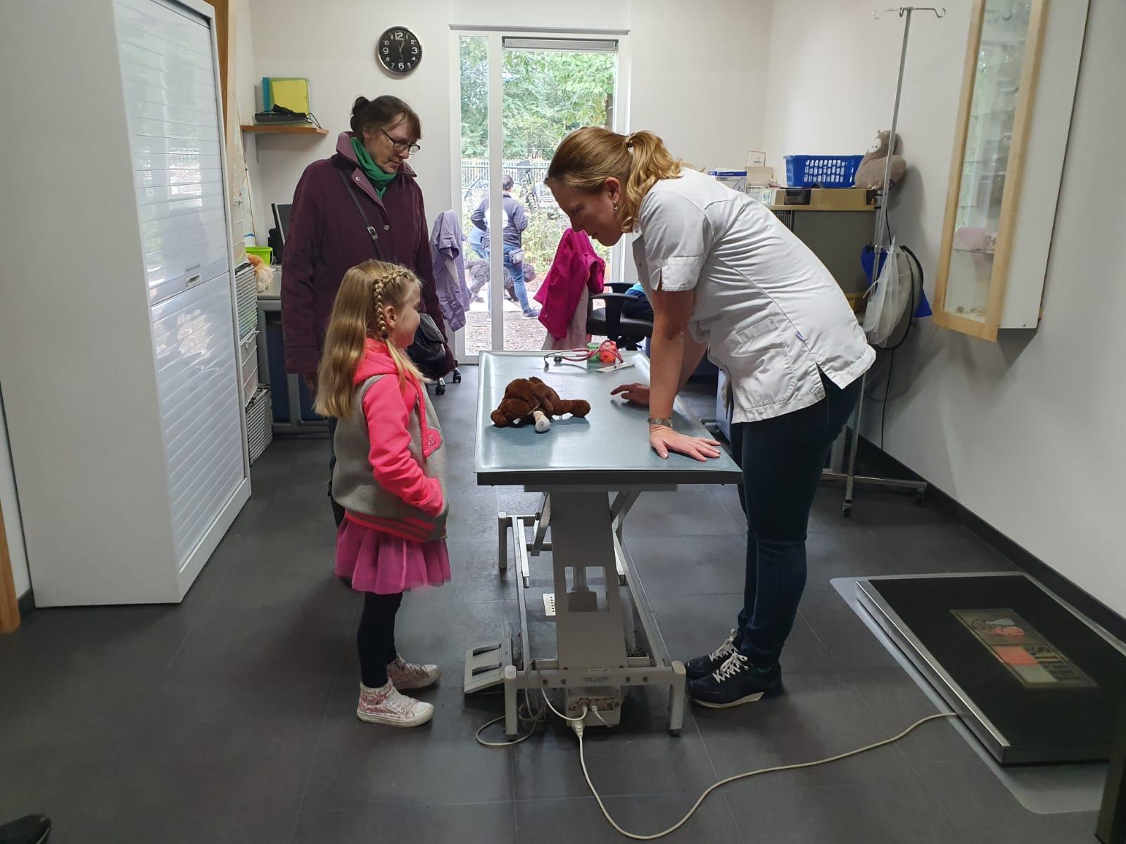 Berendokter Suzanne van Dierenartsenpraktijk De Keerhoeve maakt vele knuffels weer beter tijdens de Open Asieldag van Dierentehuis Stevenshage in Leiden.
