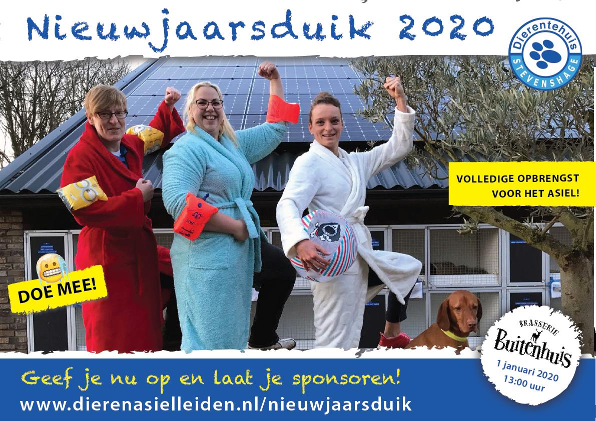 Doe mee met de Nieuwjaarsduik 2020 voor de asieldieren van Dierentehuis Stevenshage!
