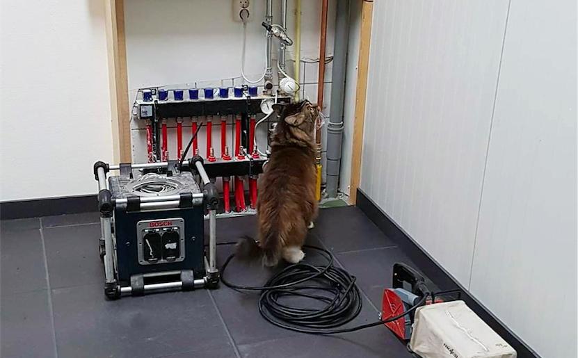 Kater Tobias helpt bij het aansluiten van de vloerverwarming bij Dierentehuis Stevenshage in Leiden.