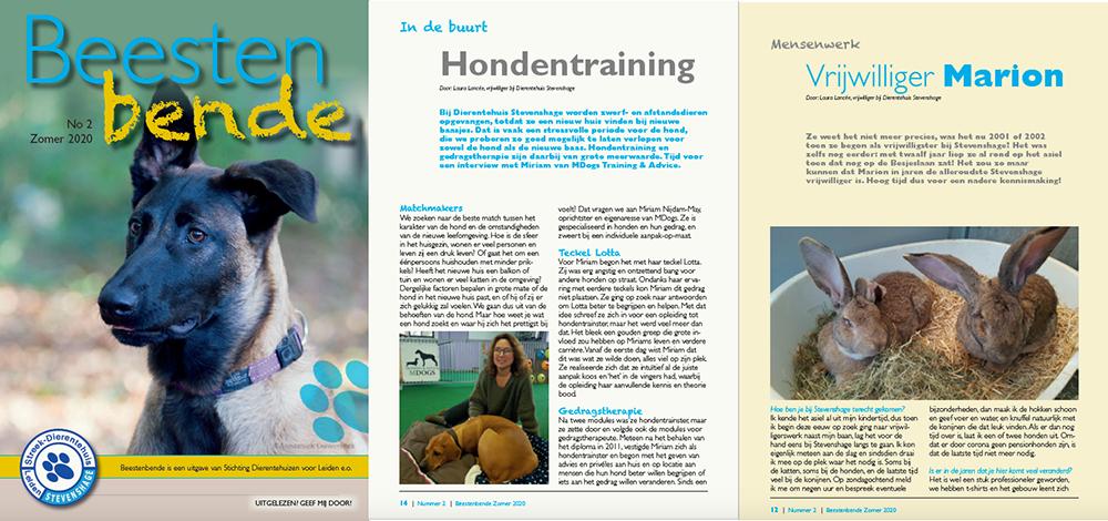 Lees de zomereditie van de Beestenbende nu online!
