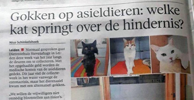 Leidsch Dagblad, 02 juli 2020