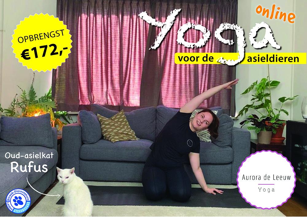 Koop onbeperkt toegang tot de online yogales van Aurora in onze webshop!