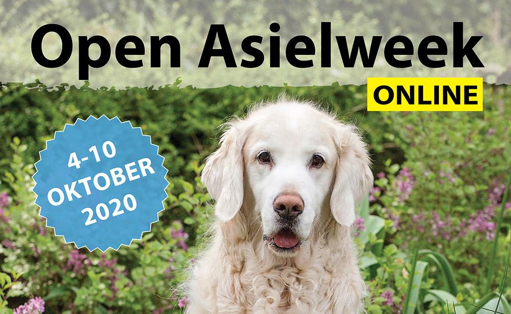 Open Asielweek Online 2020