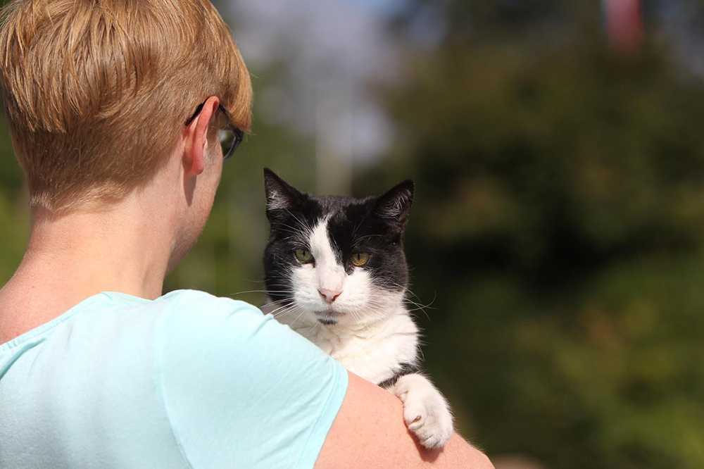 Kater Amstel met zijn baasje, kattenverzorgster Marlies van Dierentehuis Stevenshage in Leiden.