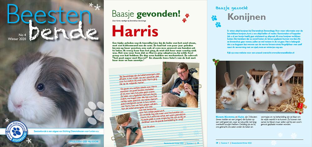 Lees nu gratis online het asielmagazine Beestenbende van Dierentehuis Stevenshage in Leiden