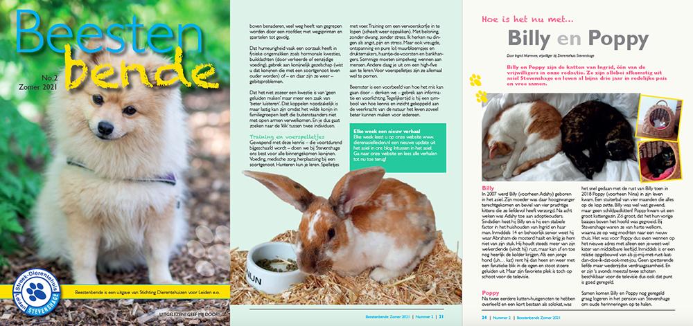 Beestenbende Zomer 2021 - Het asielblad van Dierentehuis Stevenshage in Leiden