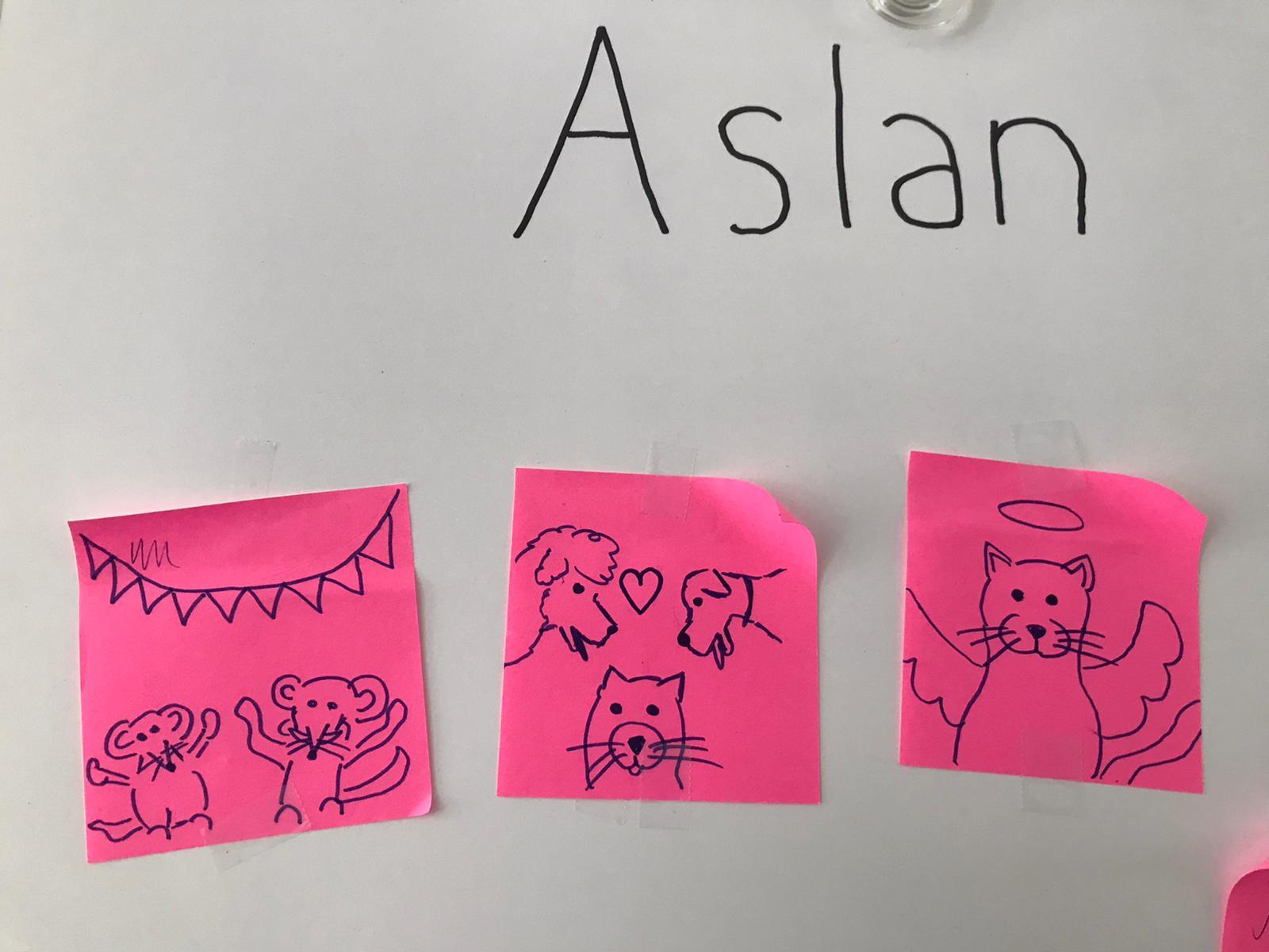 Tekeningen voor Aslan. Hij was de kat van Nicolette, asielbeheerder van Dierentehuis Stevenshage in Leiden.
