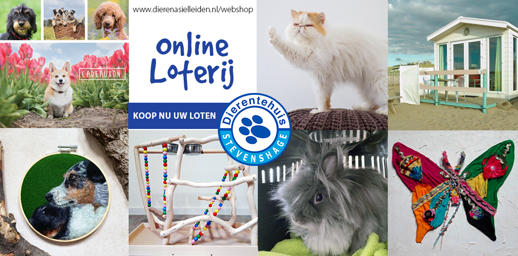 Klik op de afbeelding om loten te kopen in de webshop van Dierentehuis Stevenshage in Leiden.