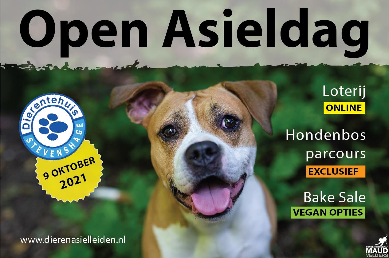 Klik voor alle activiteiten op de Open Asieldag 2021 bij Dierentehuis Stevenshage in Leiden!
